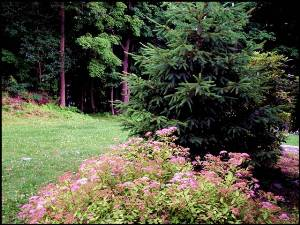 Catskill Mountains Vacation Rentals Catskill Home Or