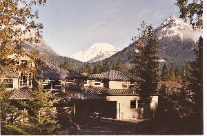 Packwood vacation rentals vacation rentals near mt for Rental cabins near mt st helens